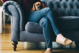 pet-sitter-service